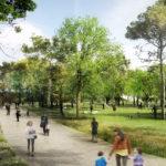 Butlletí núm. 157 | En marxa el projecte del bosc urbà del Canòdrom