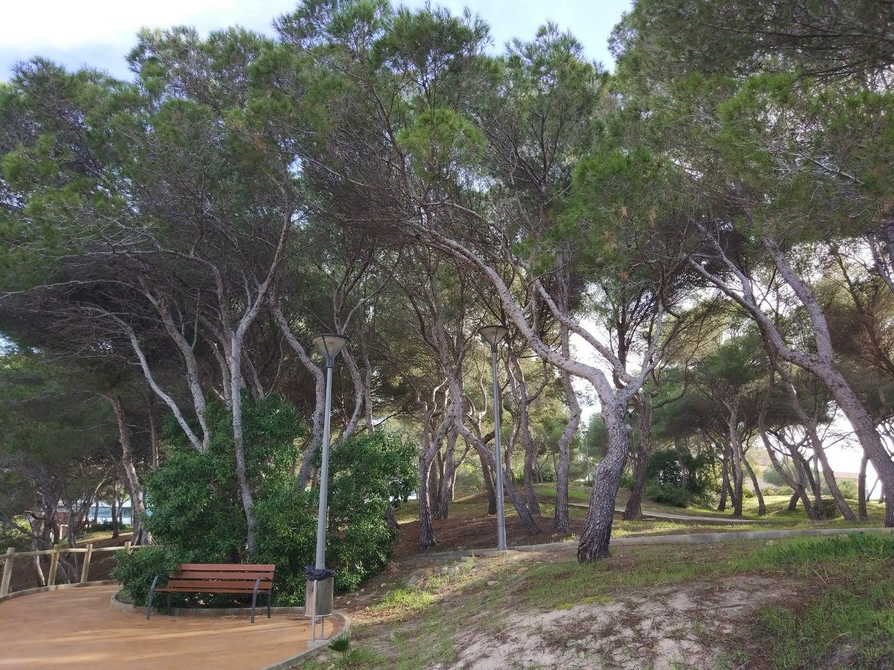 Incorporam una nova zona verda per a Palma, el Parc Llaüt